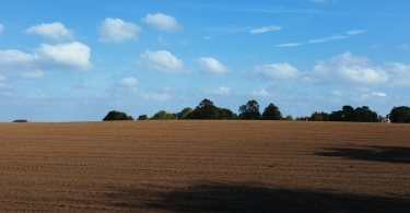Plowed field and blue sky thumbnail