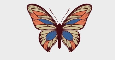 FreeVectorButterfly.jpg